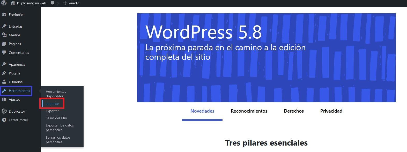 Herramienta importar de WordPress