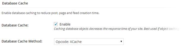 Apartado Database Cache en la configuración de W3 Total Cache