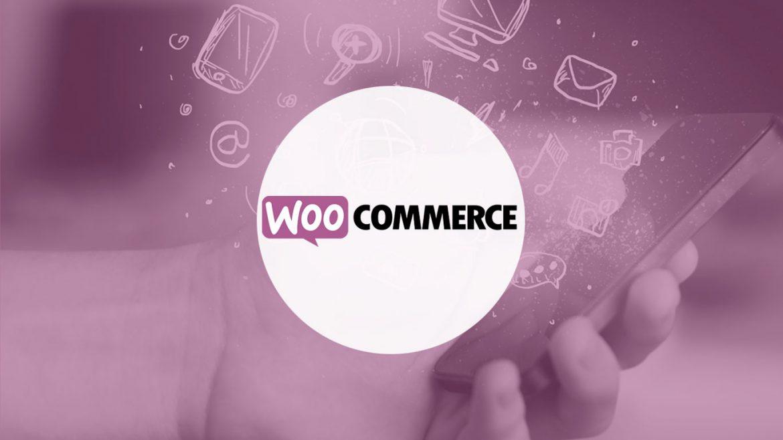 Selección de plugins de WooCommerce | dinahosting