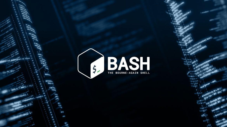 Que es Bash Script